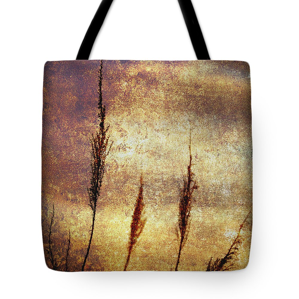 Abstract Tote Bag featuring the photograph Winter Gold by Skip Nall