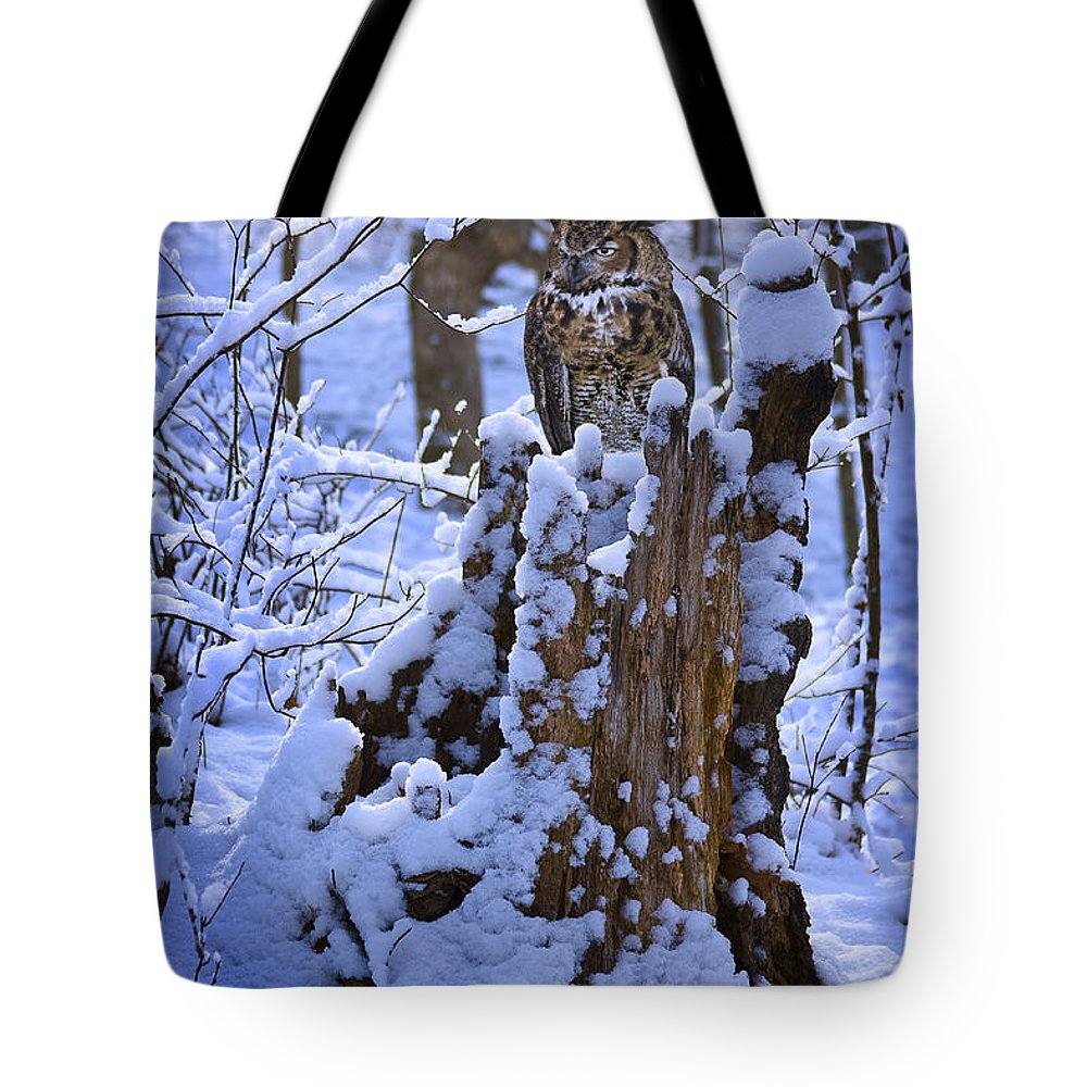 Winter Tote Bag featuring the photograph Winter Guest by Ron Jones