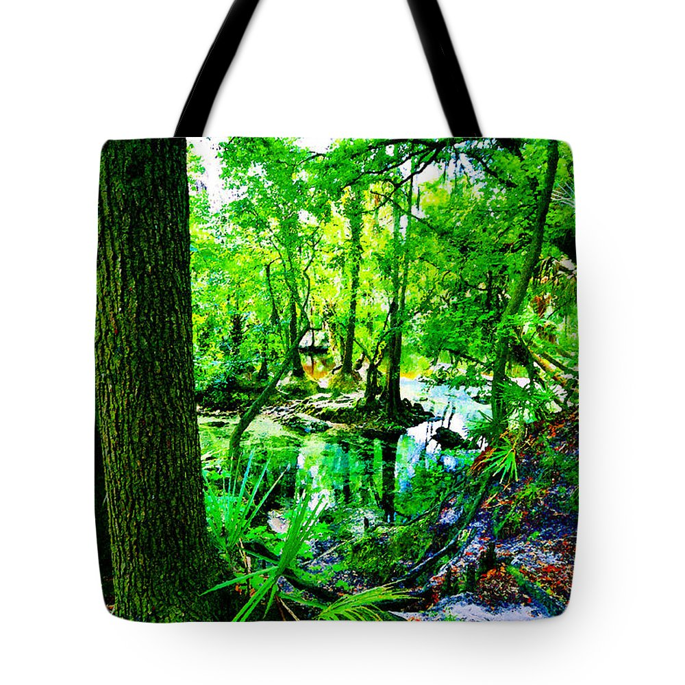 Winter In Paradise Tote Bag featuring the painting Winter In Paradise by David Lee Thompson