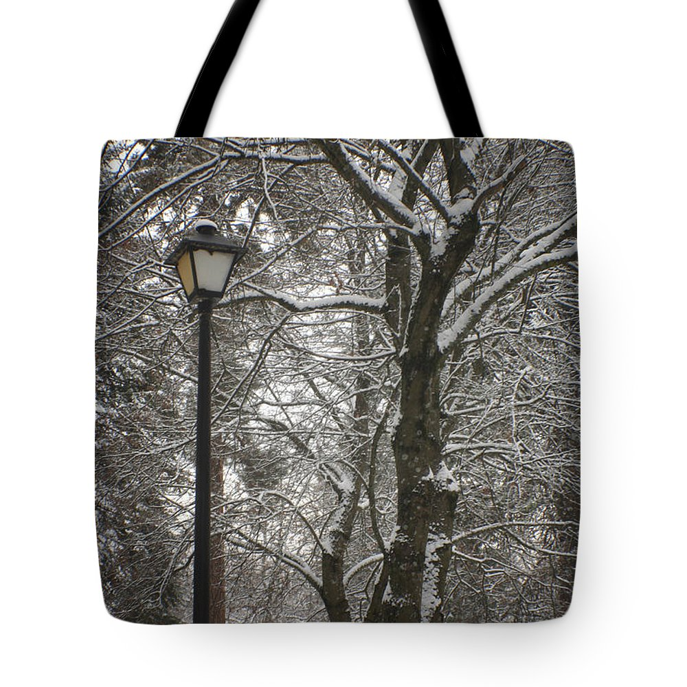 Lamp Tote Bag featuring the photograph Winter Lamp Post by Idaho Scenic Images Linda Lantzy