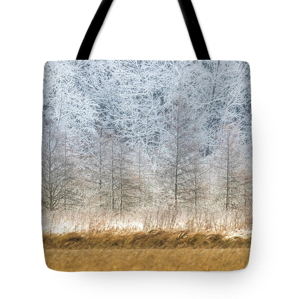 Winter Tote Bag featuring the photograph Winter Layers by Patti Deters
