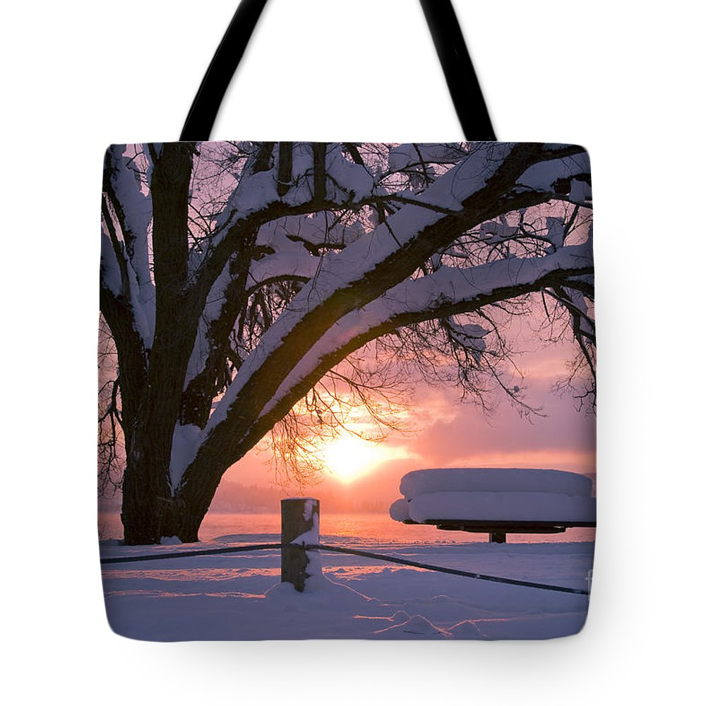 Winter Tote Bag featuring the photograph Winter Light by Idaho Scenic Images Linda Lantzy