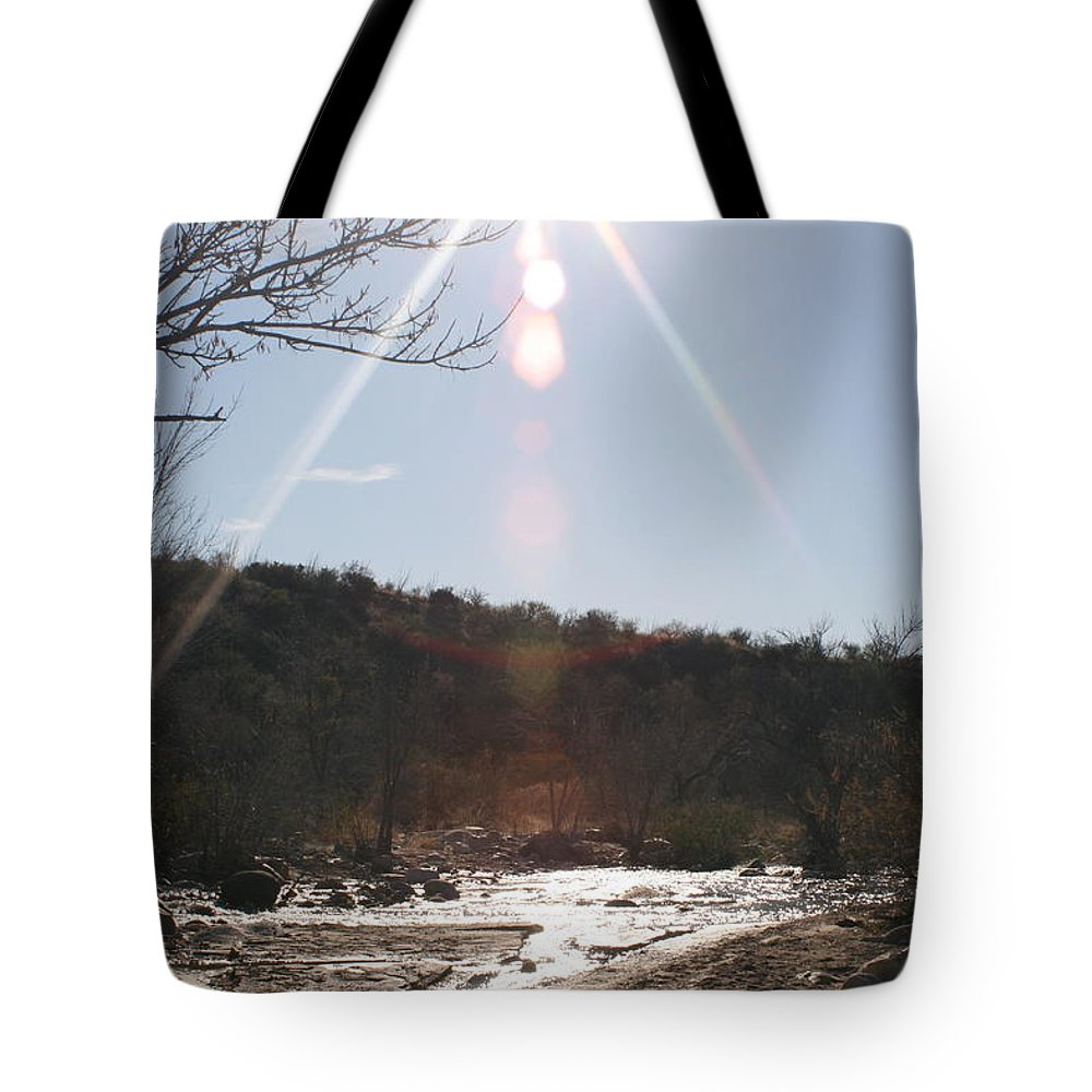 Winter Tote Bag featuring the photograph Winter Light by Nadine Rippelmeyer
