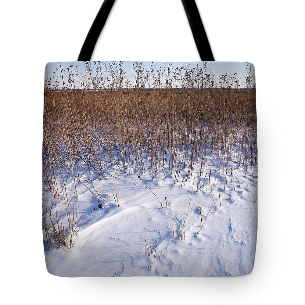 Goose Tote Bag featuring the photograph Winter On The Prairie by Steve Gadomski