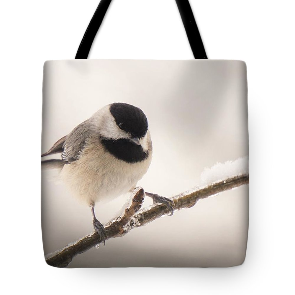 Chickadee Tote Bag featuring the photograph Winter Portrait by Karen Beasley