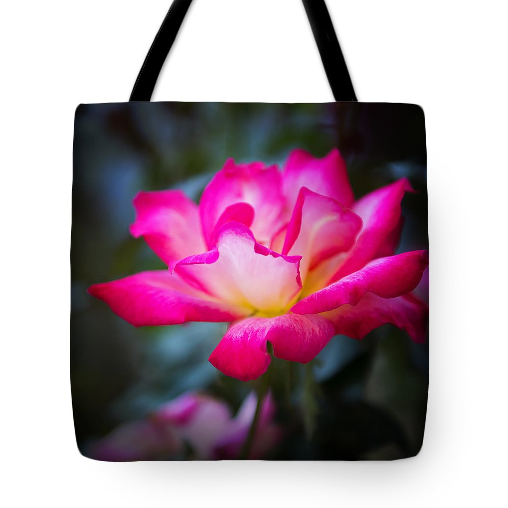 Flora Tote Bag featuring the photograph Winter Rose by Paula Barrickman