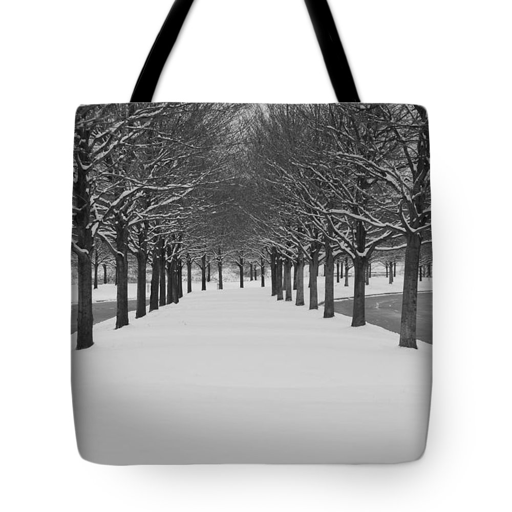 Trees Tote Bag featuring the photograph Winter Rows by Lauri Novak