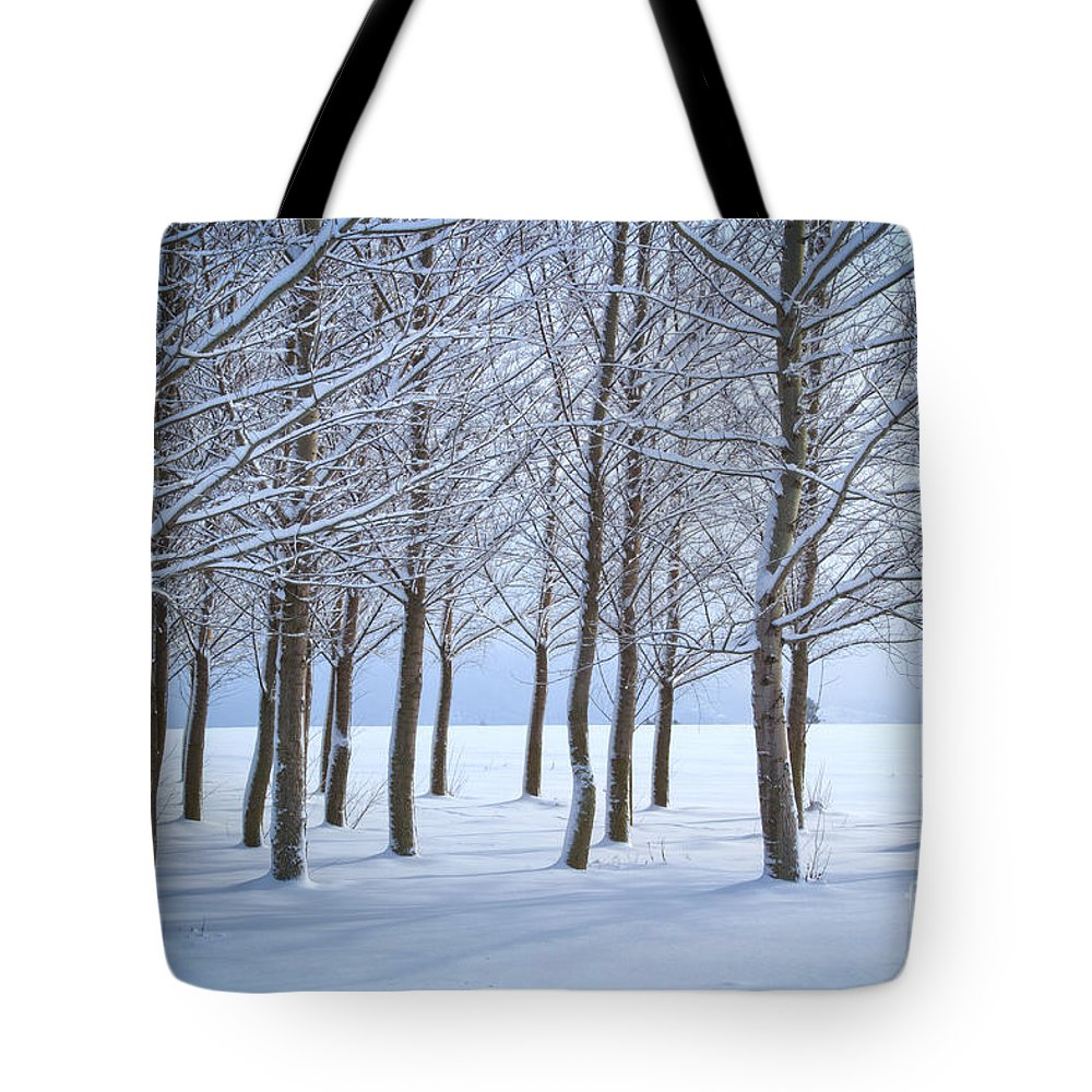 Idaho Tote Bag featuring the photograph Winter Sentinels by Idaho Scenic Images Linda Lantzy