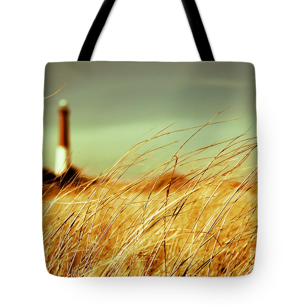 Lighthouse Tote Bag featuring the photograph Winter Shore Breeze by Dana DiPasquale