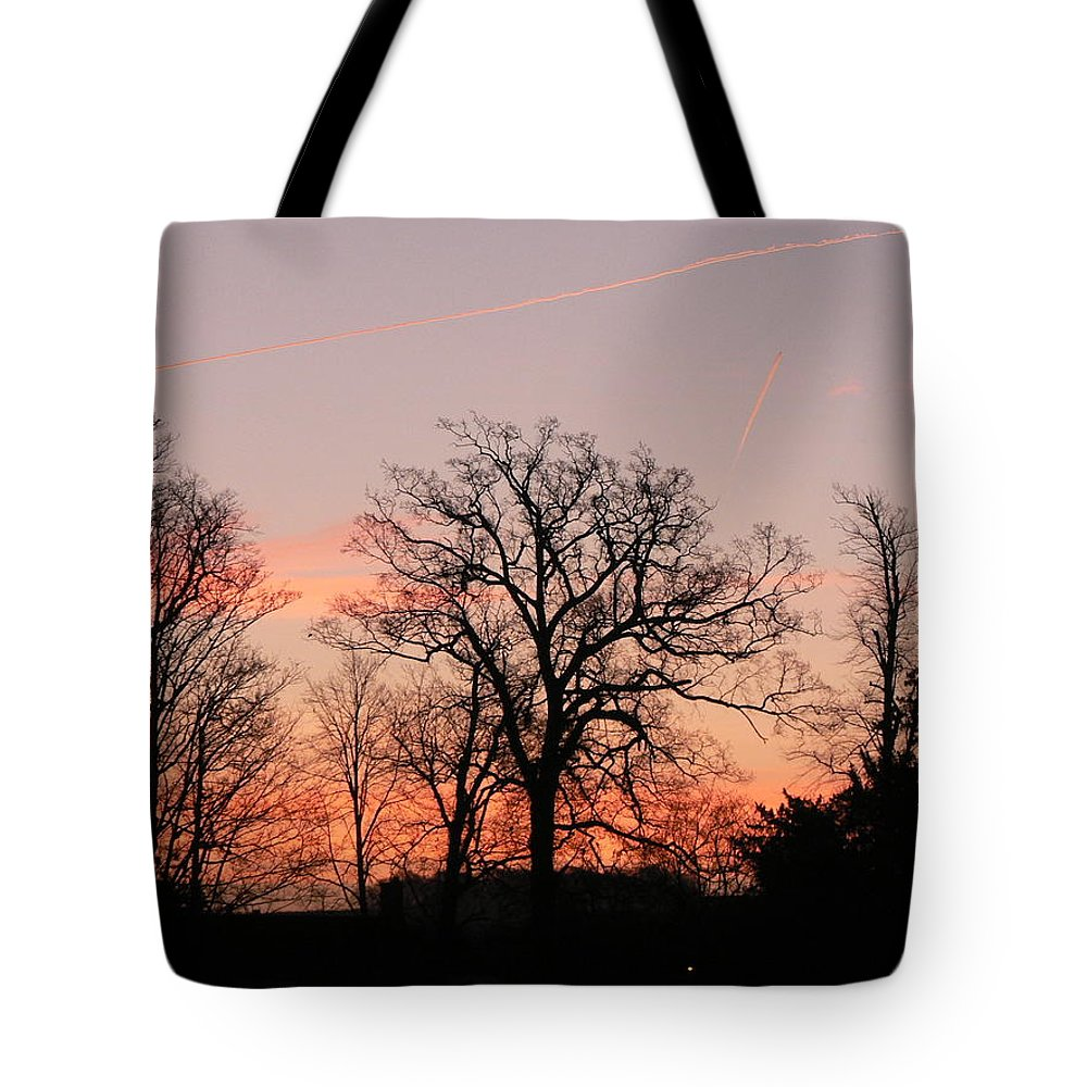 Trees Tote Bag featuring the photograph Winter Skies by Lynne Iddon