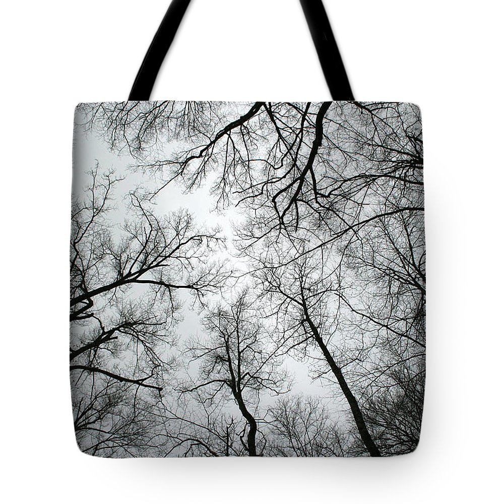 Winter Sky Tree Trees Grey Gloomy Peaceful Quite Calm Peace Cloudy Overcast Dark Tote Bag featuring the photograph Winter Sky by Andrei Shliakhau