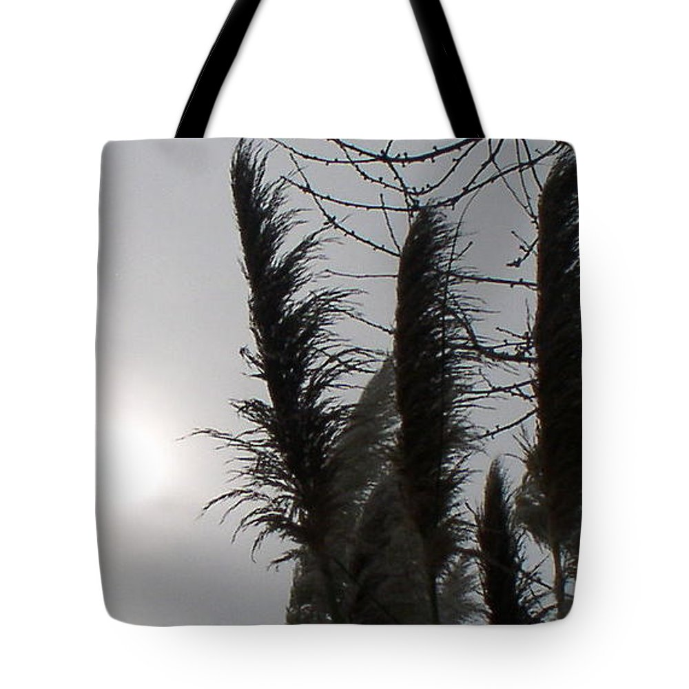 Winter Tote Bag featuring the photograph Winter Sun by Valerie Josi