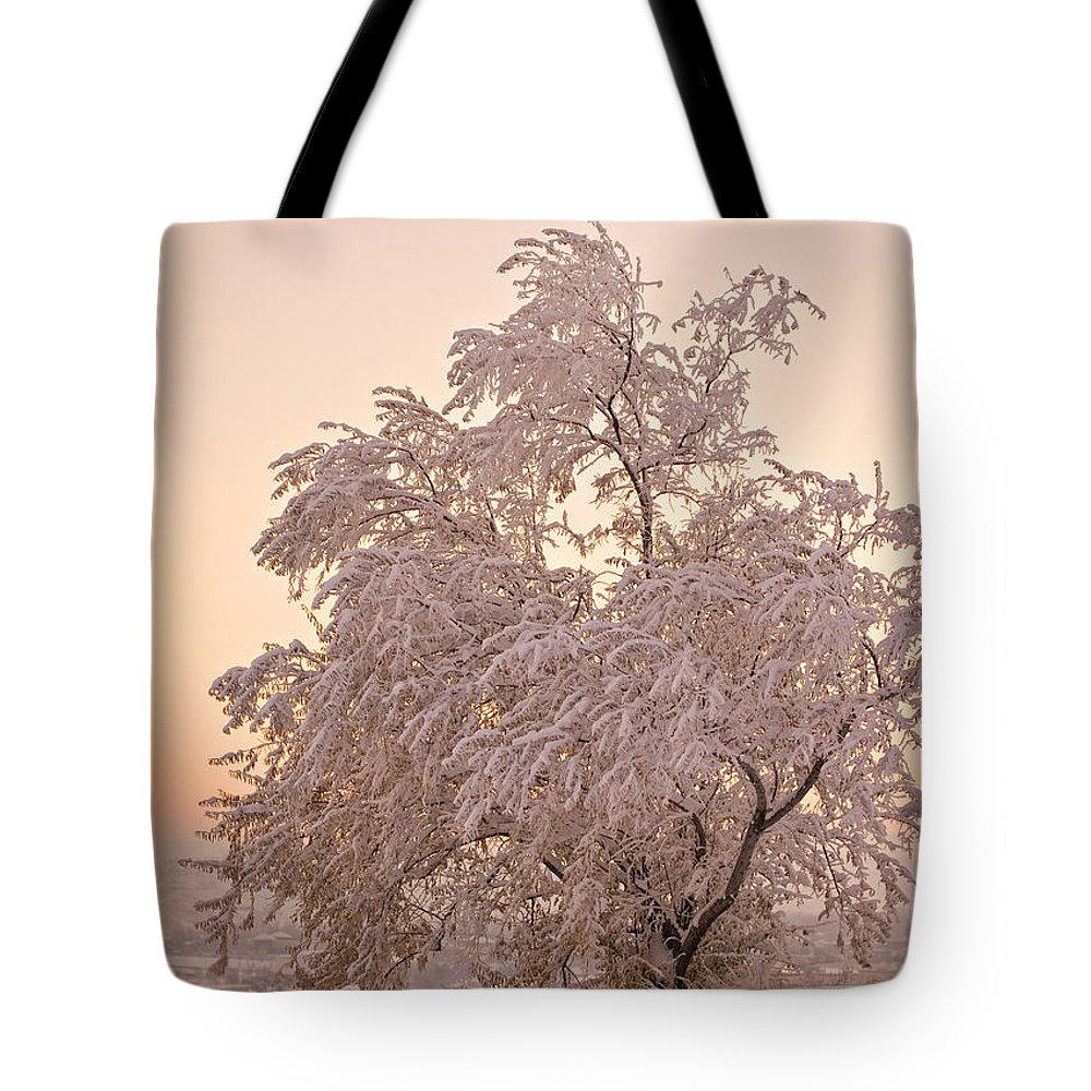 Winter Tote Bag featuring the photograph Winter Sunset by Marilyn Hunt