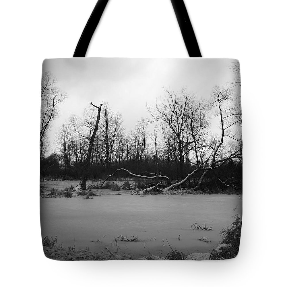 Swamp Tote Bag featuring the photograph Winter Swamp by Michelle Miron-Rebbe