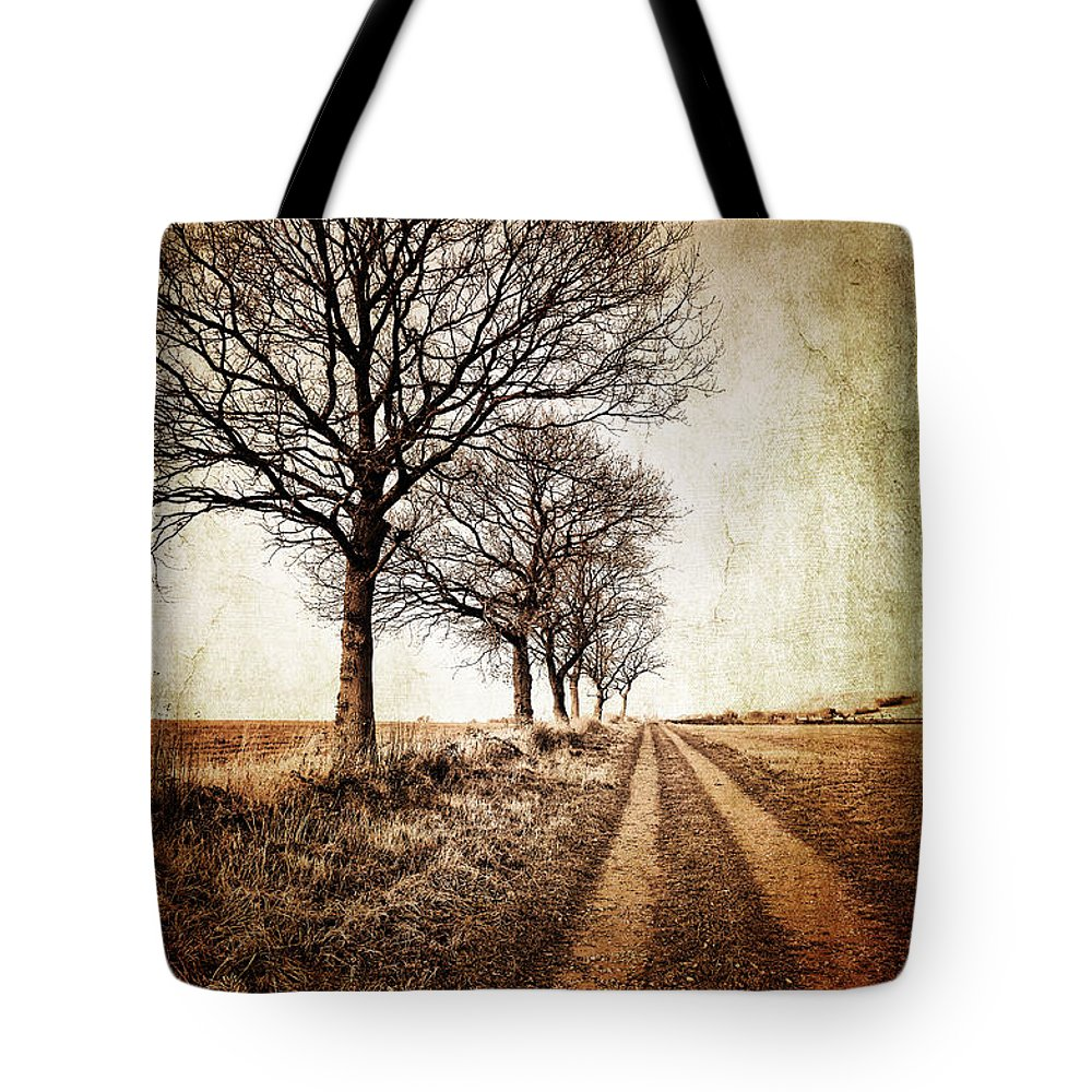 Aged Tote Bag featuring the photograph Winter Track With Trees by Meirion Matthias