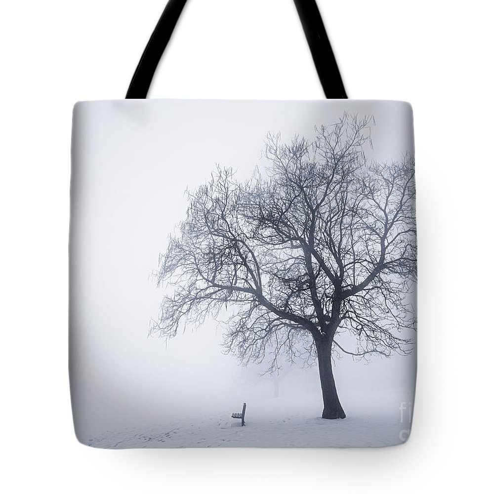 Tree Tote Bag featuring the photograph Winter Tree And Bench In Fog by Elena Elisseeva