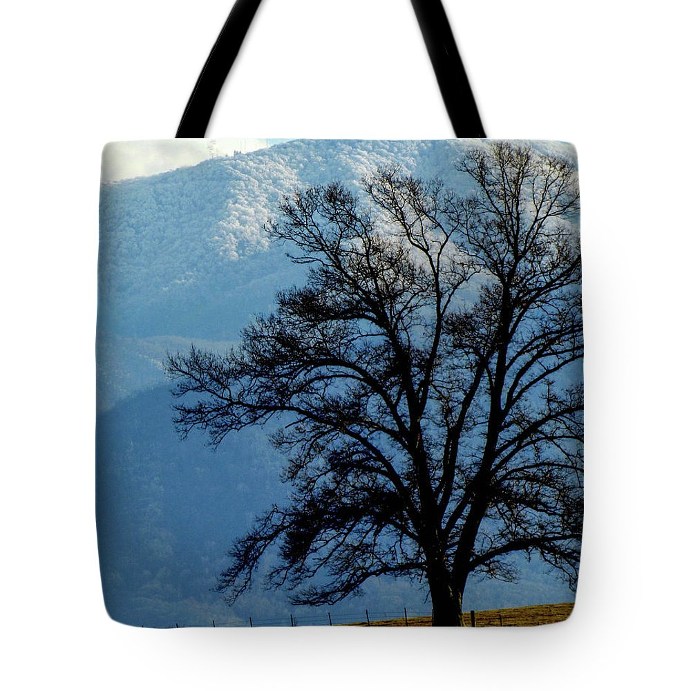 Nature Winter Mountains Snow Landscape Country Tote Bag featuring the photograph Winter Tree by Judy Baird