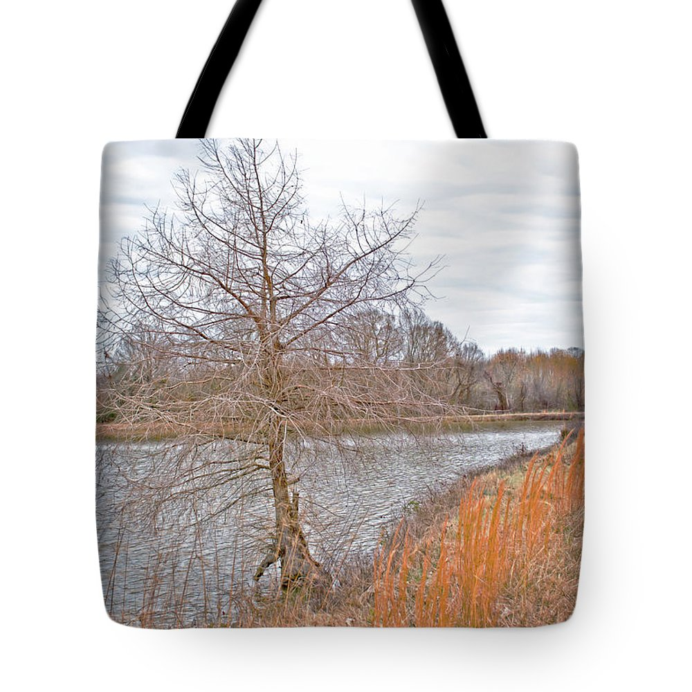 Pond Tote Bag featuring the photograph Winter Tree On Pond Shore by Gina O'Brien