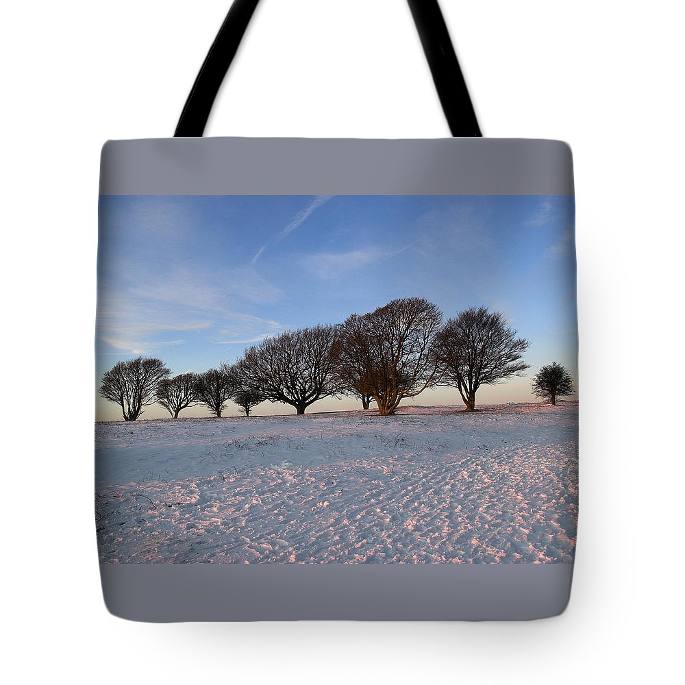 South Tote Bag featuring the photograph Winter Trees On The Ring by Hazy Apple