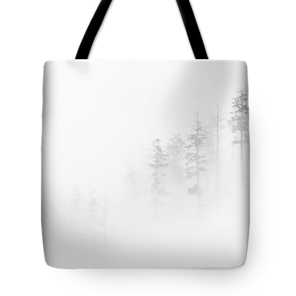 Winter Tote Bag featuring the photograph Winter Veil by Mike Dawson