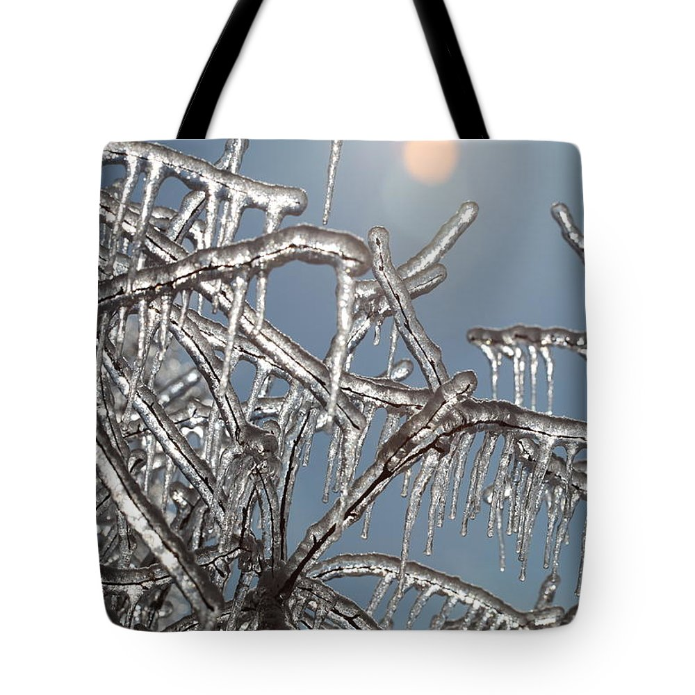 Winter Tote Bag featuring the photograph Winter Warmth by Nadine Rippelmeyer