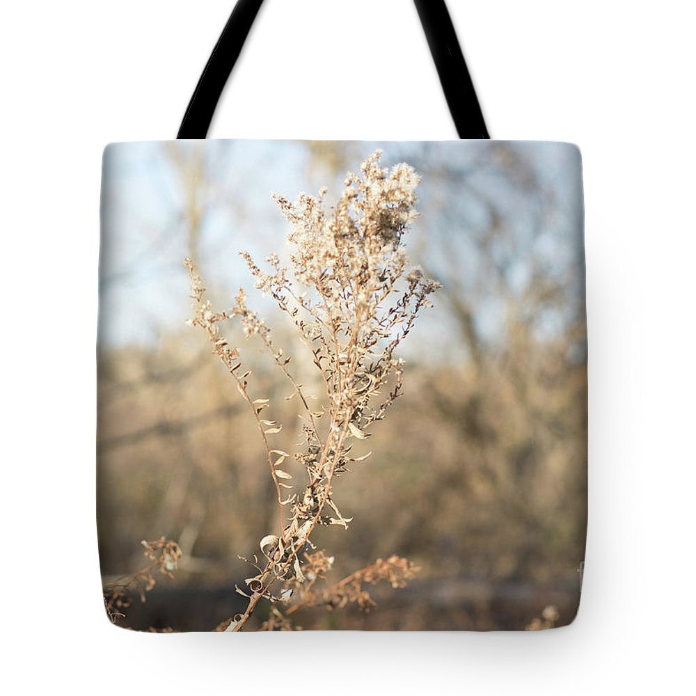 Winter Tote Bag featuring the photograph Winter Weeds by Howard Roberts