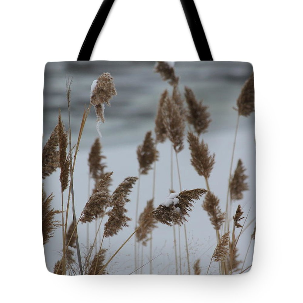 Winter Tote Bag featuring the photograph Winter Weeds by Lauri Novak