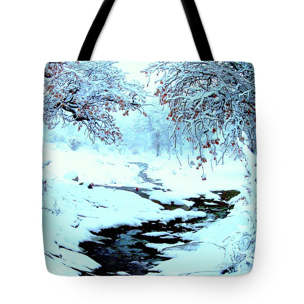 Winter Tote Bag featuring the photograph Winter Wonder by Jerome Stumphauzer