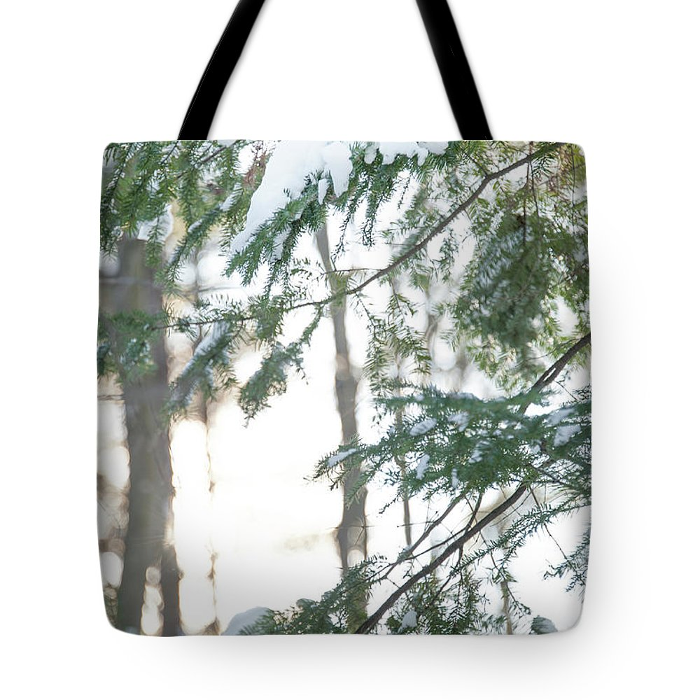 Snow Tote Bag featuring the photograph Winter Wonderland by Audrey Wilkie