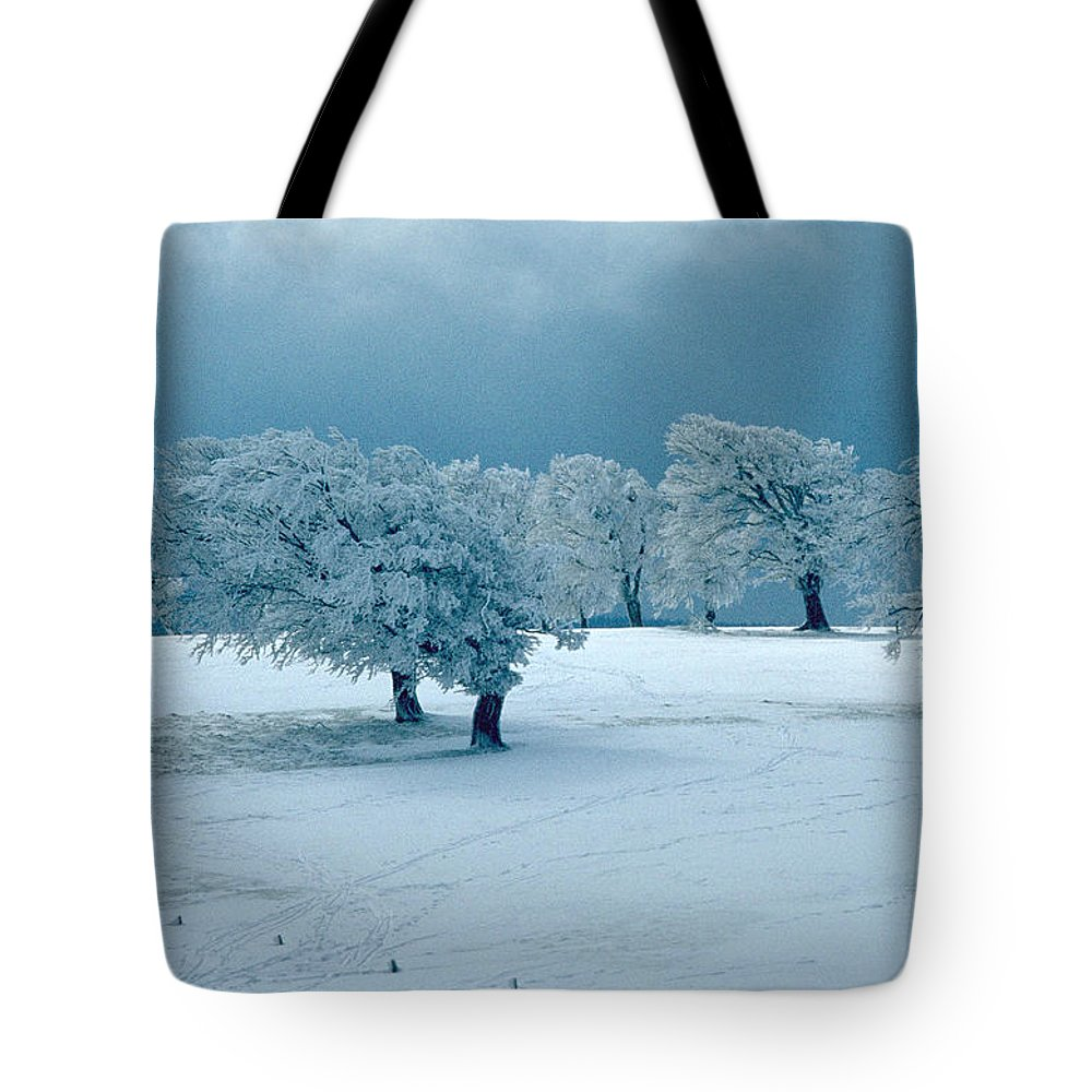 Winter Tote Bag featuring the photograph Winter Wonderland by Flavia Westerwelle
