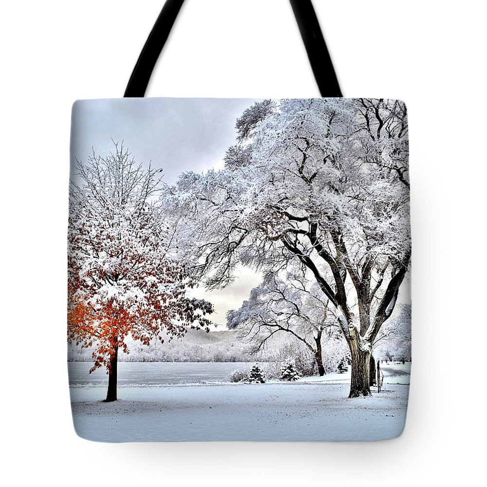 Winter Tote Bag featuring the photograph Winter Wonderland by Susie Loechler