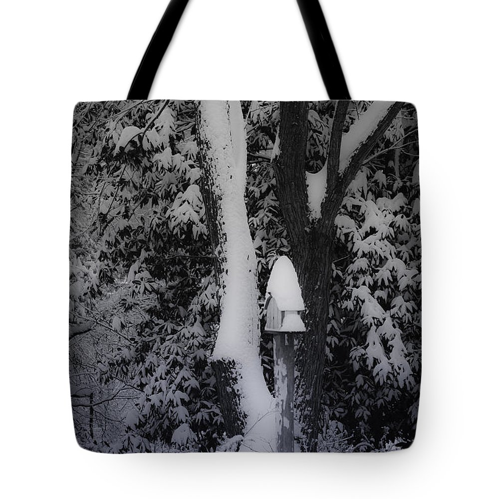 Winter Tote Bag featuring the photograph Winter Wonderland by Teresa Mucha