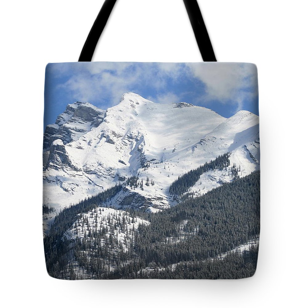 Winter Tote Bag featuring the photograph Winter Wonderland by Tiffany Vest
