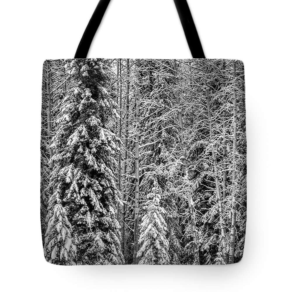 Bow Valley Parkway Tote Bag featuring the photograph Winter Wonderland by Yves Gagnon