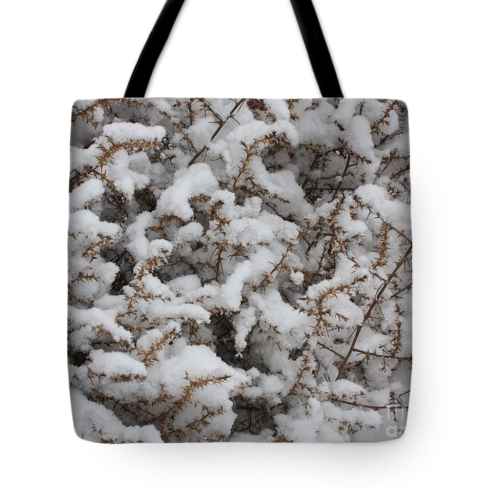 Snow Tote Bag featuring the photograph Winter's Contrast by Carol Groenen