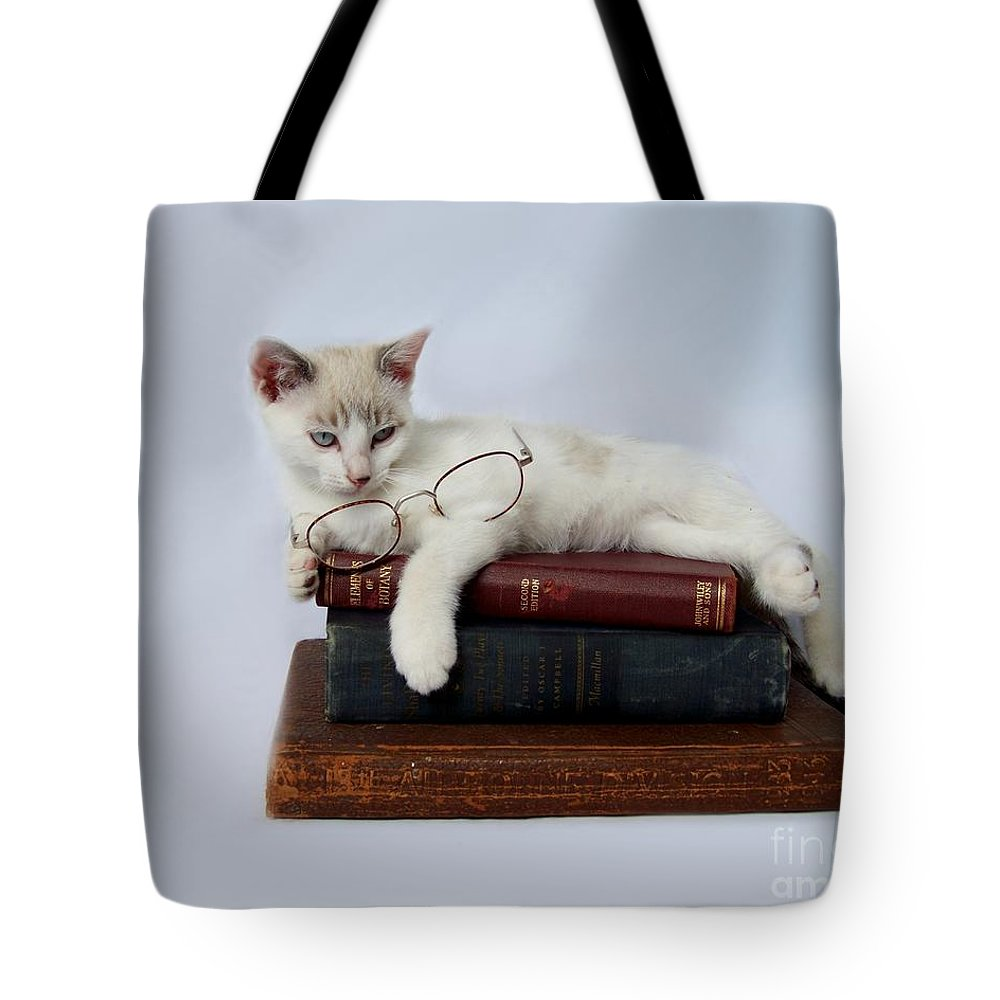 Cat Tote Bag featuring the photograph Wisdom by Jai Johnson