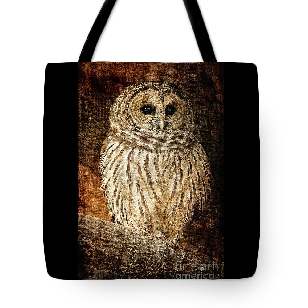 Owl Tote Bag featuring the photograph Wisdom by Lois Bryan