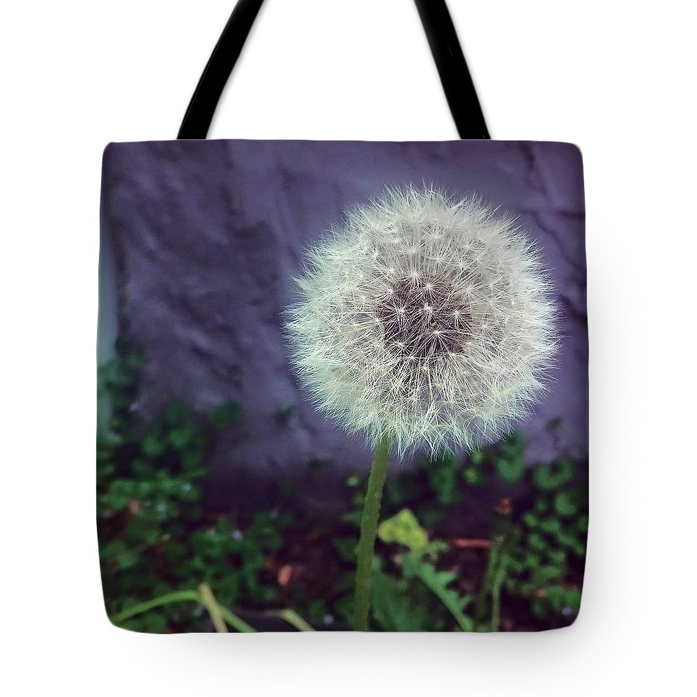 Wish Flower Tote Bag featuring the photograph Wishful Thinking by Aly Robinson