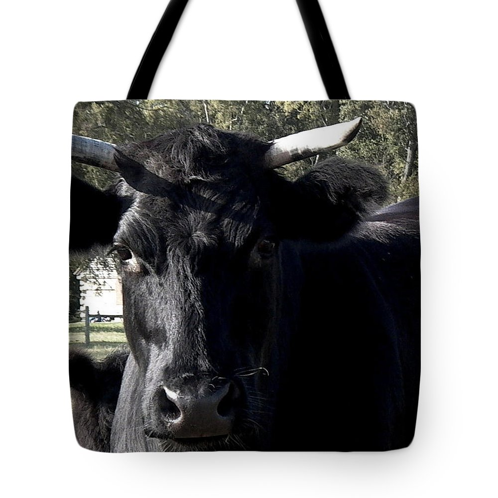 Bull Tote Bag featuring the photograph With Love - Bull Friend by Theresa Asher