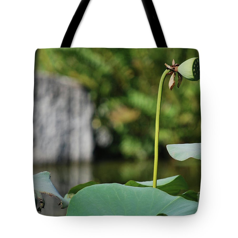 Tote Bag featuring the photograph Without Protection Number Four by Heather Kirk