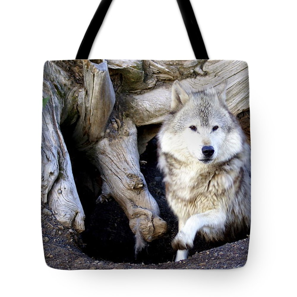 Wolf Tote Bag featuring the photograph Wolf Den 1 by Marty Koch