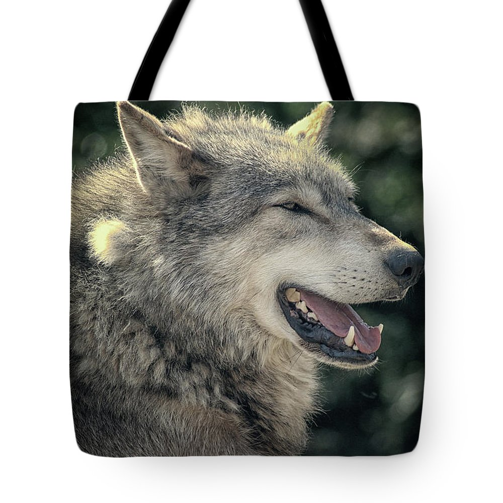 Wolf Tote Bag featuring the photograph Wolf Rock by Martin Newman