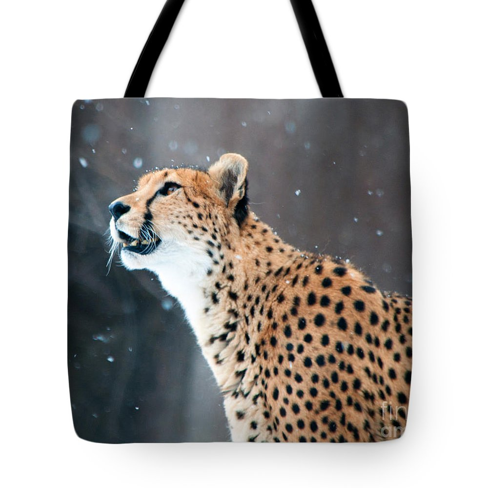 Cheetah Tote Bag featuring the photograph Wonder Of Snow by Lula Adams