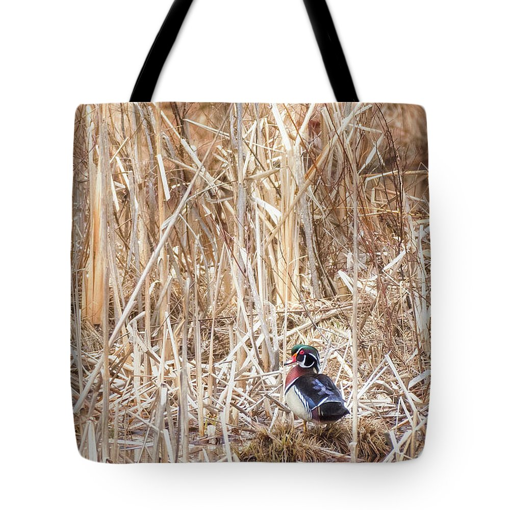 Wood Duck Tote Bag featuring the photograph Wood Duck Drake 2 by Bill Wakeley