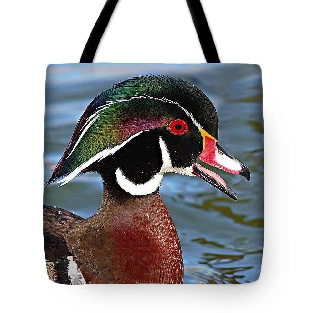 Wood Duck Tote Bag featuring the photograph Wood Duck Drake Calling In Spring Courtship by Max Allen