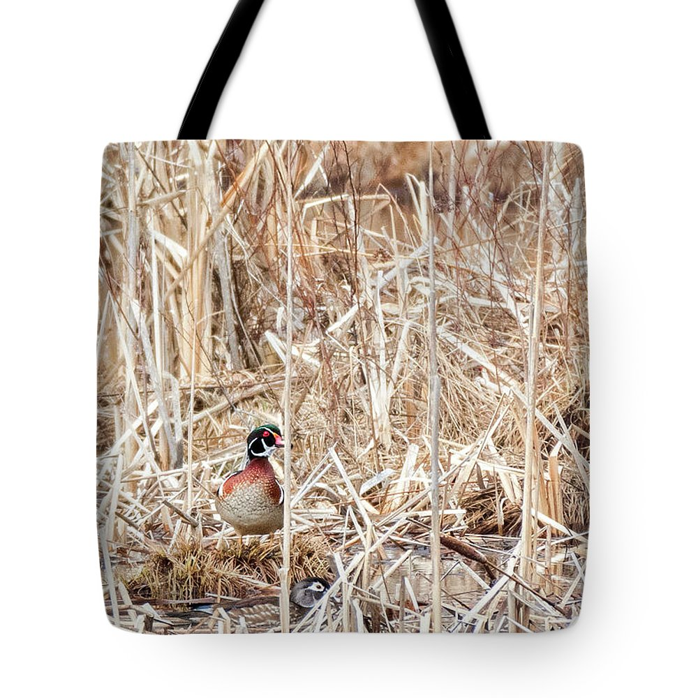 Wood Duck Tote Bag featuring the photograph Wood Duck Mates 2018 by Bill Wakeley