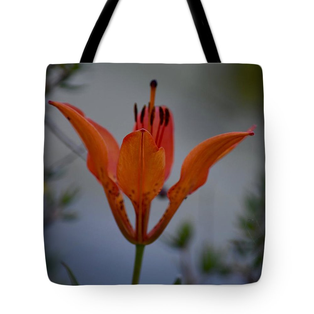 Wildflower Tote Bag featuring the photograph Wood Lily With Lake Superior In Background by Hella Buchheim