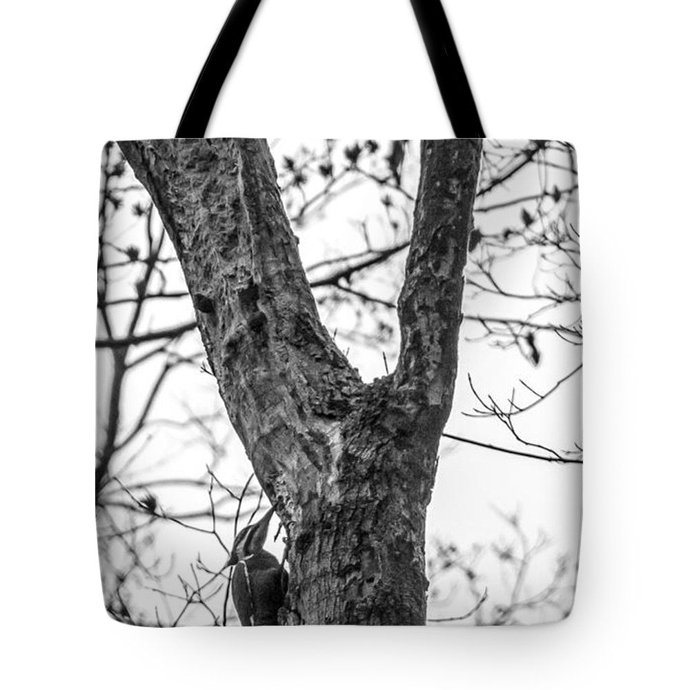 Blackandwhite Tote Bag featuring the photograph Woodpecker by Jennifer Wick