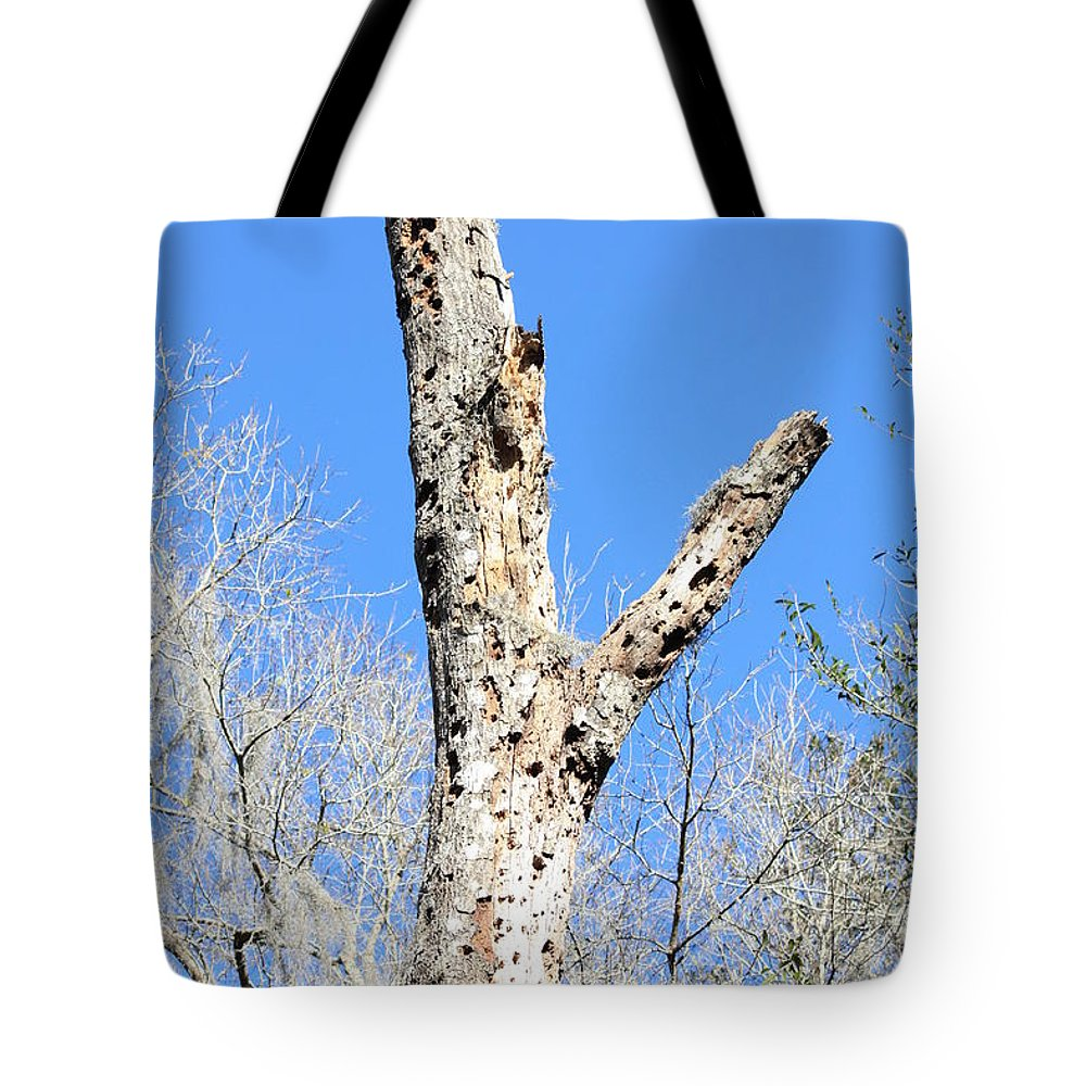 Old Tree Tote Bag featuring the photograph Woodpecker Was Here by Carol Groenen