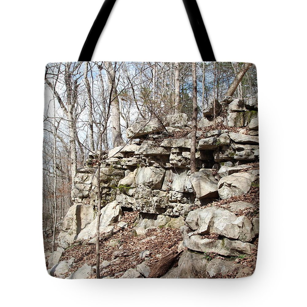 Woods Of Lake Guntersville Tote Bag featuring the photograph Woods Of Lake Guntersville by Robert Smith